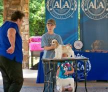 Ellen, Roberts, dog, breeder, aca, show, Ellen-Roberts, dog-breeder, aca-dog-show, pic02, picture